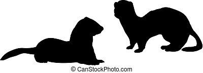 動物, シルエット, 2, テン, ferret., イタチ, family.
