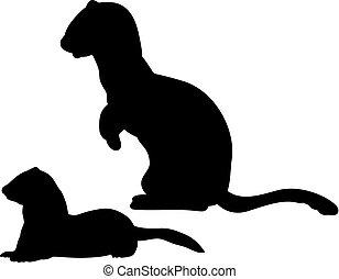 動物, フェレット, シルエット, テン, イタチ, ferret., イタチ, family., 幼獣