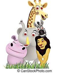 動物, 卡通