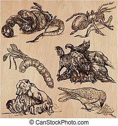 動物, 活動中, 捕食者, -, ∥, 手, 引かれる, ベクトル, illustrations., collection.