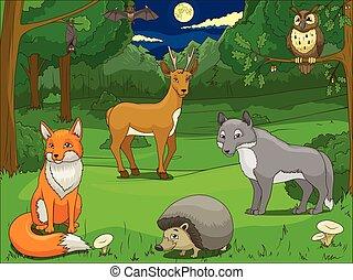 動物, 游戲, 卡通, 森林, 教育