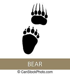 動物, 熊, 跡