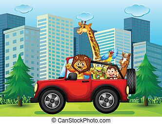 動物, jeepney