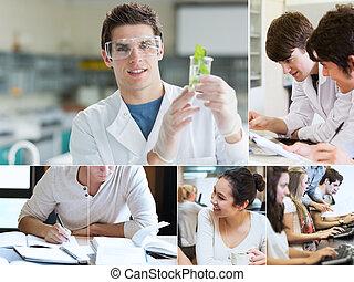 化学, 生徒, コラージュ
