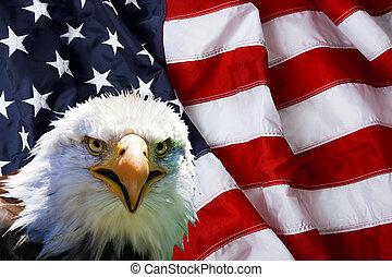 北アメリカ人, 白頭鷲, 上に, アメリカの旗