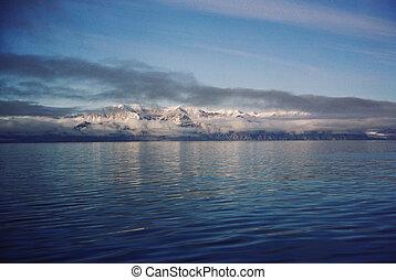北極, 冰, 以及, 水