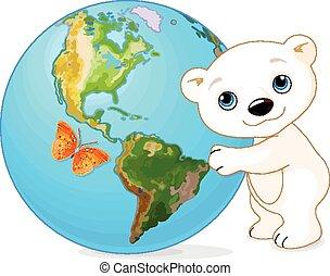 北極, 日, 熊, 地球