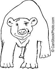 北極, 着色, ページ, 熊