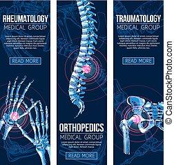 医学, ベクトル, rheumatology, 旗, traumatology