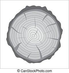 十字路口段, ......的, 樹殘干, 或者, trunk., 木頭, cut.
