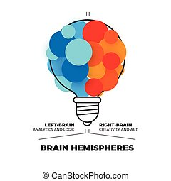 半球, 脳, ベクトル