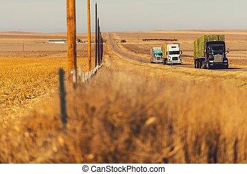 半, 卡車, 上, a, 高速公路