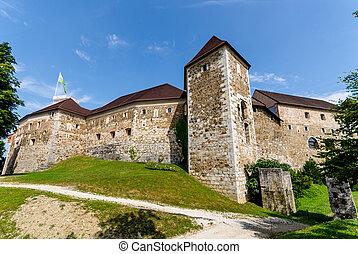 卒業生, ljubljanski, -, スロベニア, ljubljana, 城, europe.