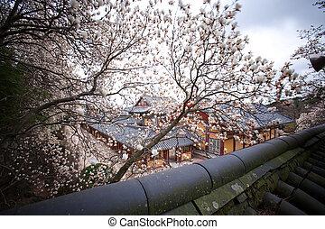 南, gyeongju, 韓国, bulguksa, 寺院