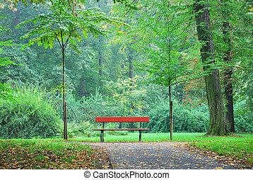 単一, 木製のベンチ, 中に, a, 森林, 公園