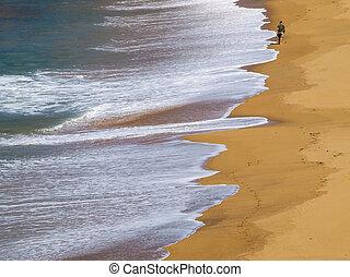単独で, 歩くこと, 浜, 人