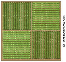 単純である, パターン, 収穫