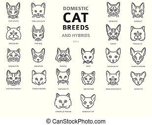 単純である, 肖像画, ハイブリッド, セット, ねこ, cat`s, 国内, 線である, 隔離された, コレクション...