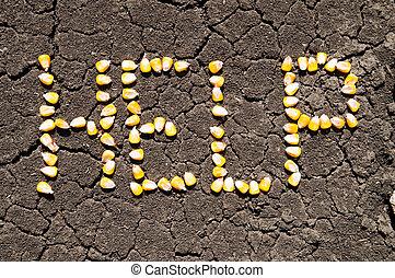 単語, 助け, 穀粒, トウモロコシ, 地球, 割れた, 上に