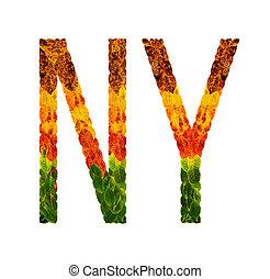 単語, 有色人種, 葉, 隔離された, イラスト, 創造的, ny, 書かれた, 背景, 印刷, 白, leaves., 旗