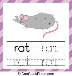 単語, worksheet, rat., 勉強, 材料, 子供, 追跡