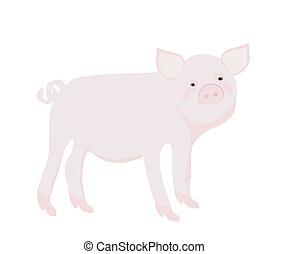 卡通, pig., 矢量, illustration.