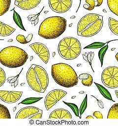 印刷, ベクトル, フルーツ, パターン, レモン, 夏, 柑橘類, seamless, drawing.