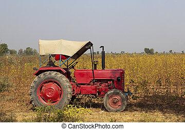 印第安語, 農業