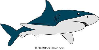 危険, イラスト, バックグラウンド。, ベクトル, 白, サメ