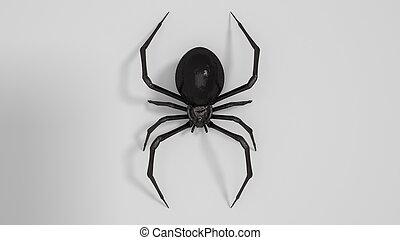 危險, 布萊克寡婦, 蜘蛛, 3d, render, 在懷特上, 背景