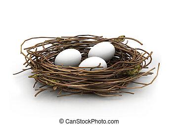 卵, そして, 巣