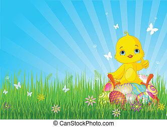 卵, イースターひよこ, モデル