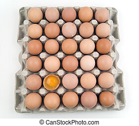 卵, 大いに