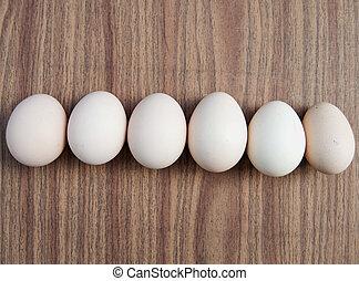 卵, 背景