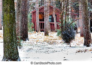 原木小屋, the, 冬天, 雪