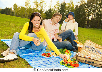 友人, ピクニック