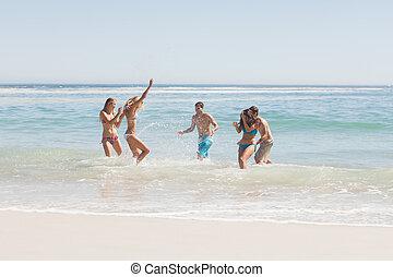 友人, 持つこと, グループ, 浜, 楽しみ