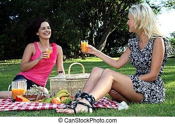 友人, 素晴らしい, ピクニック, 女性