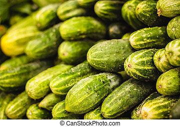 収穫, 新たに, cucumbers., 背景, 緑