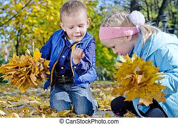 収集, 葉, 子供, 秋