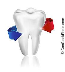 取得, 囲まれた, beams., 歯, vector., 歯, 白, concept., 心配