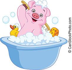 取得, 豚, 浴室