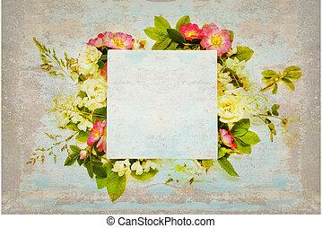 古い, ばら, 野生, スクラップブック, 白い花, ページ