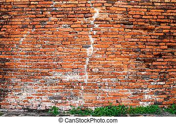 古い, れんがの壁, そして, 緑のプラント, 地面