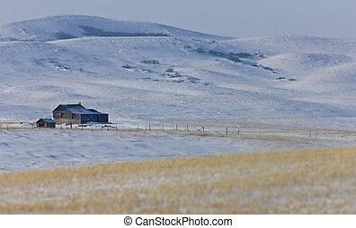 古い, 家屋敷, 冬