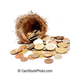 古い, 巣, コイン, 背景, 新しい, 白い鳥