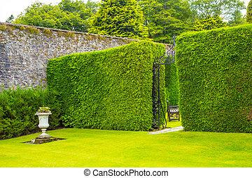 古い, 庭, 両掛け, 高く, 鉄のゲート