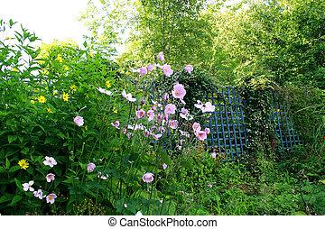 古い, 庭, 美しい
