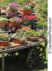 古い, 木製である, ワゴン, ∥で∥, 多数, ポット, の, 花