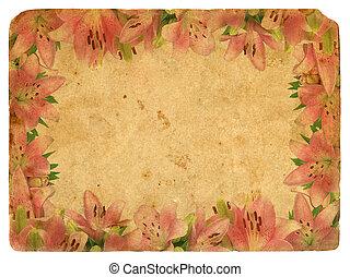 古い, postcard., フレーム, ピンク, lilies.